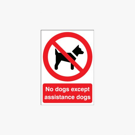 Self Adhesive Plastic A3 No Dogs Except Assistance Dogs Signs